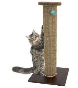 Cat Scratch Post